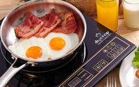 Best Portable Induction Cooktop Reviews 2019