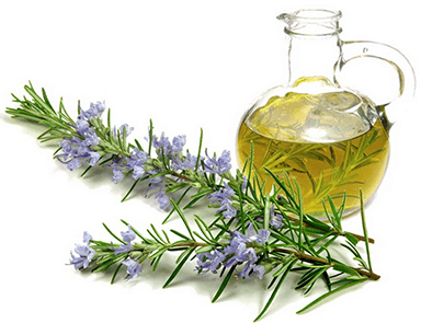 rosemary-oil-hair-growth