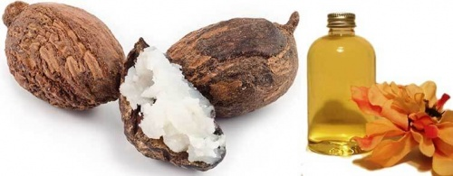 shea nut oil hair